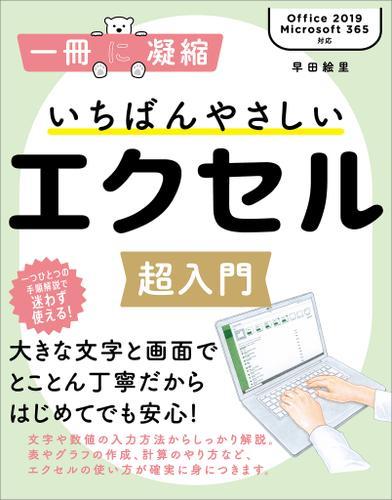 いちばんやさしいエクセル超入門 / 早田絵里