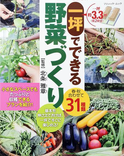 一坪でできる野菜づくり / ブティック社編集部
