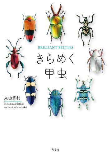きらめく甲虫 / 丸山宗利