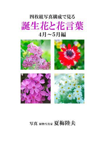 四枚組写真構成で見る誕生花と花言葉4~5月編 / アイロゴス