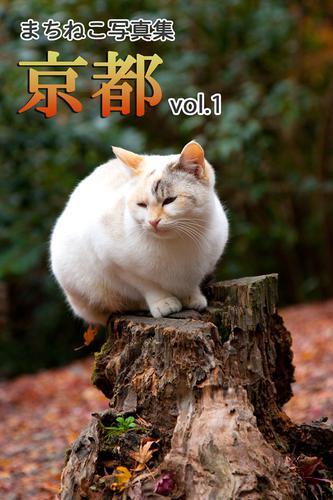 まちねこ写真集・京都 vol.1 / どうぶつZOO館
