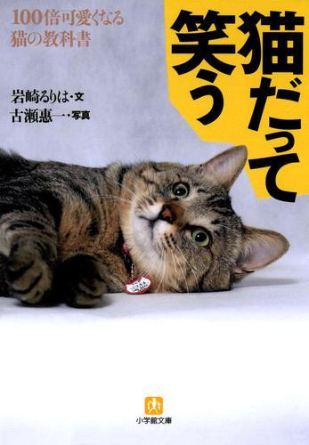 猫だって笑う100倍可愛くなる猫の教科書(小学館文庫) / 岩崎るりは