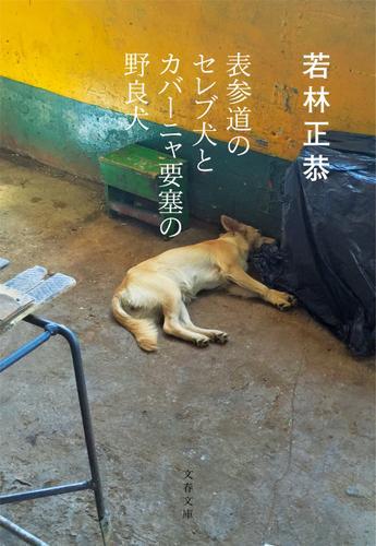 表参道のセレブ犬とカバーニャ要塞の野良犬 / 若林正恭