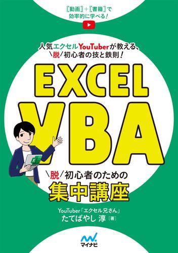 Excel VBA 脱初心者のための集中講座 / たてばやし淳
