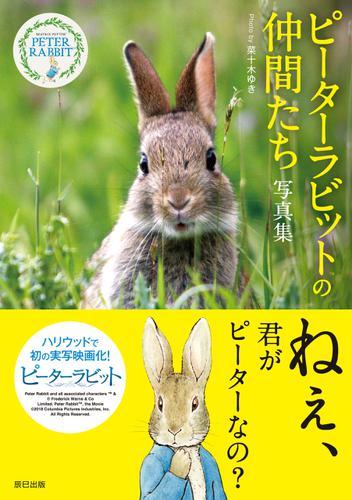ピーターラビット(TM)の仲間たち 写真集 / 菜十木ゆき
