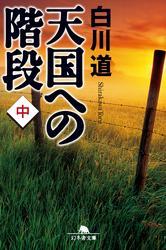 天国への階段(中) / 白川道