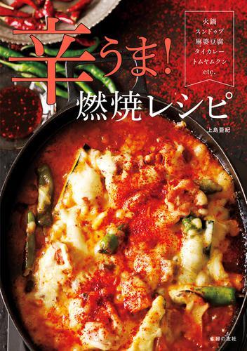 辛うま!燃焼レシピ / 上島亜紀