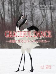 GRACEFUL DANCE(English/中文/日本語)