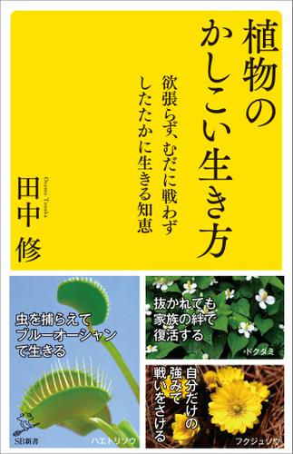 植物のかしこい生き方 欲張らず、むだに戦わずしたたかに生きる知恵 / 田中修