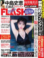 FLASH(フラッシュ) (7/4号)