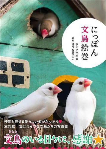 にっぽん文鳥絵巻 / 清水知恵子