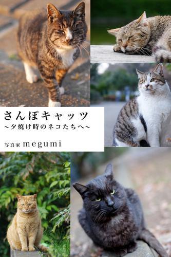 さんぽキャッツ ~夕焼け時のネコたちへ~ / megumi