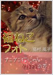 福ねこフォト~プニプニ猫にゃん クリスマスの巻 / 猫村風子