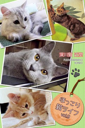 ほっこり猫ライフ vol.9 / BlueLabel
