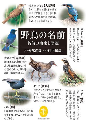 ヤマケイ文庫 野鳥の名前 名前の由来と語源 / 安部 直哉