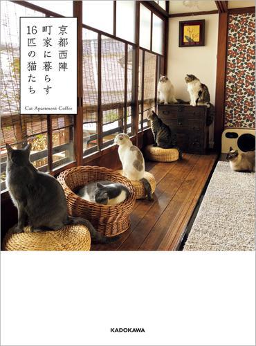 京都西陣 町家に暮らす16匹の猫たち / CatApartmentCoffee