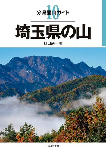 分県登山ガイド10 埼玉県の山 / 打田えいいち