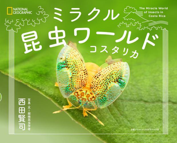 ミラクル昆虫ワールド コスタリカ / ナショナルジオグラフィック