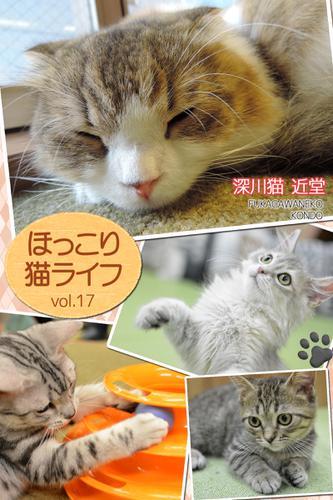 ほっこり猫ライフ vol.17 / BlueLabel