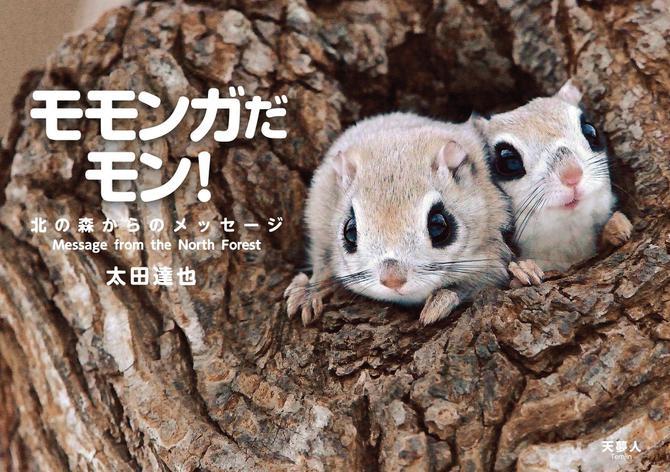 モモンガだモン!北の森からのメッセージ / 太田 達也