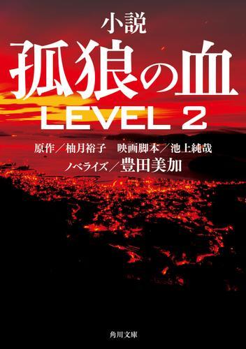 小説 孤狼の血 LEVEL2 / 豊田美加