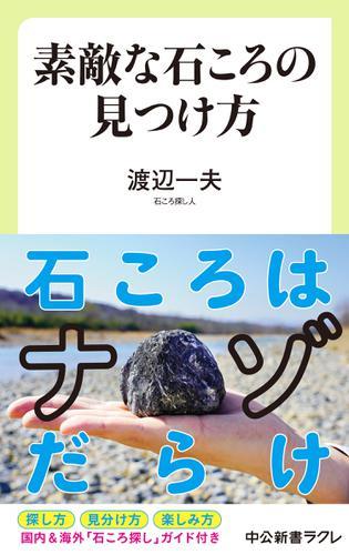 素敵な石ころの見つけ方 / 渡辺一夫